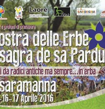 32^ Mostra delle erbe e sagra de sa Pardula di Ussaramanna